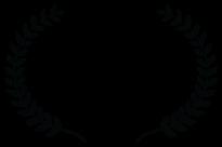 OFFICIAL SELECTION - Black Star Film Festival - 2013